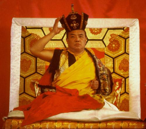 Gyalwang Karmapa Rigpe Dorje